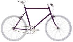 SS Purple